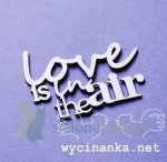 "Wycinanka Wycinanka napis ""Love is in the air"""