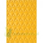 Folder do embbosingu Sizzix Pinaple Ananas