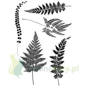 Stemple akrylowe Woodware ferns - paprocie