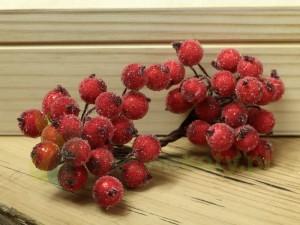 http://zielonekoty.pl/pl/p/Owoce-glogu-czerwone-kuleczki-oszronione-11mm-40szt-/1055