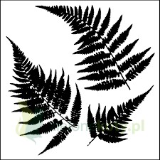 Szablon Crafter's Workshop  TCW 15x15cm Mini Ferns