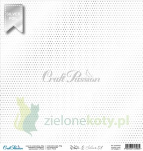 Papier 30x30 Craft Passion White & Silver 01